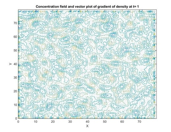 Concentration field and vector plot of gradient of density at t1